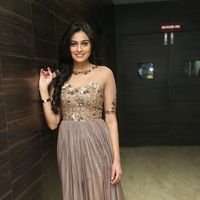 Neha Hinge at Srivalli Audio Launch Function Photos