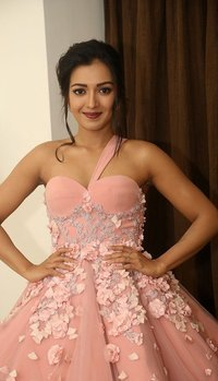 Catherine Tresa - Jio Filmfare South Awards 2017 Photos