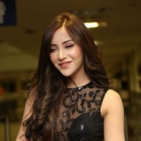 Angela Krislinzki - Rogue Telugu Movie Teaser Launch Photos