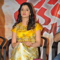 Richa Panai - Rakshaka Bhatudu Movie Trailer Launch Photos