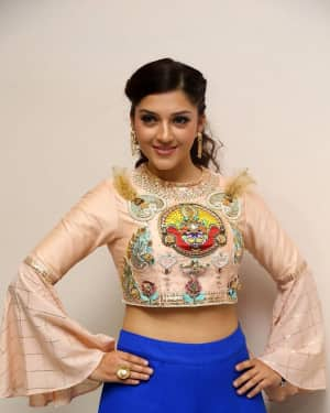 Mehreen Kaur - Raja The Great Movie Theatrical Trailer Launch Photos   Picture 1533974