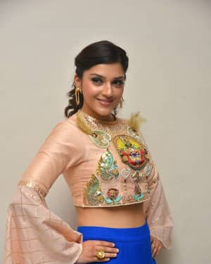 Mehreen Kaur - Raja The Great Movie Theatrical Trailer Launch Photos | Picture 1533944