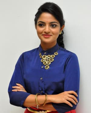 Actress Nikhila Vimal at Meda Meeda Abbayi Movie Pre Release Function Photos | Picture 1525549