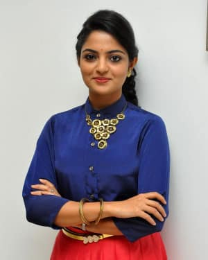 Actress Nikhila Vimal at Meda Meeda Abbayi Movie Pre Release Function Photos | Picture 1525548
