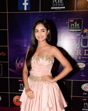 Tridha Choudhury - Zee Telugu Apsara Awards 2018 Red Carpet Stills | Picture 1576617