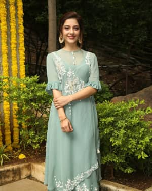 Mehreen Kaur Stills at Rizwan Movies Production No 2 Movie Opening | Picture 1594133
