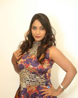 Actress Meghana at HBD Pre Release Event Photos | Picture 1562991