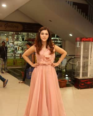 Actress Mehreen Kaur Stills at Pantham Success Meet