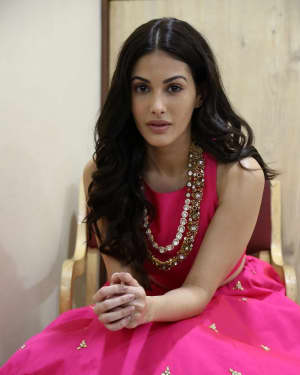 Rajugadu Movie Heroine Amyra Dastur Interview Photos