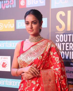 Shanvi Srivastava - Photos: SIIMA Awards 2018 Red Carpet - Day 1