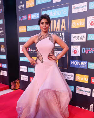 Shriya Saran - Photos: SIIMA Awards 2018 Red Carpet - Day 1 | 1597237