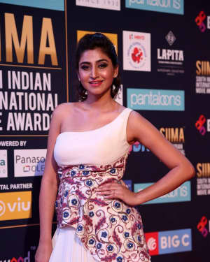 Shamili Sounderajan - Photos: SIIMA Awards 2018 Red Carpet - Day 2