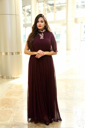 Shweta Jadhav @ Announcement Of Upcoming 'Hi-Life' Exhibition 2018 Photos