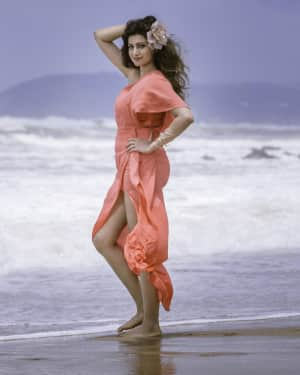 Hamsa Nandini Latest Photoshoot | Picture 1621646